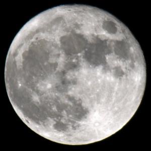 13-DSC_5684 - Copy.JPG